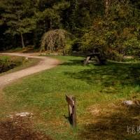 Rogaland Arboret