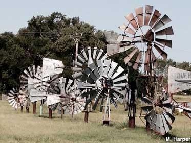 Windmill Garden