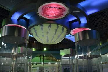 China Watermelon Museum