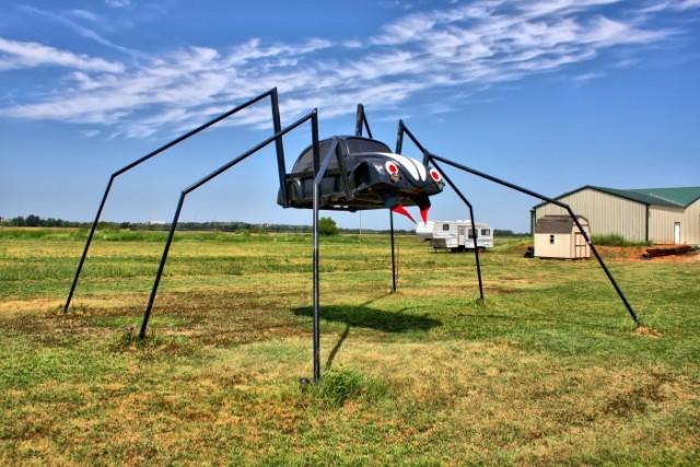 Spider VW Bug