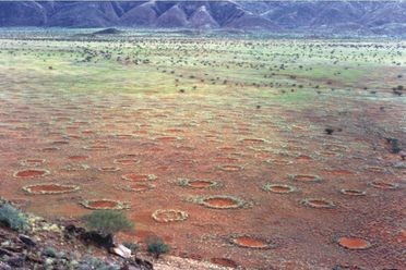 Fairy Circles of Southern Africa
