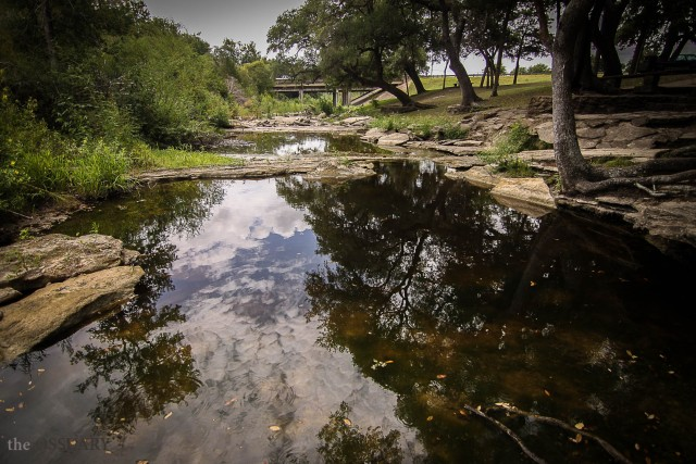 Texas Roadside Park